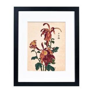 "Chrysanthemum Giclée Print Titled ""Calming"""