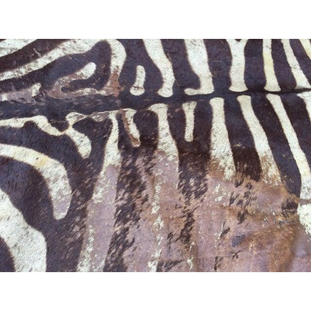 Vintage Brown Zebra Hide Rug
