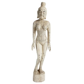 Chinese Acupuncture Statue XL Female