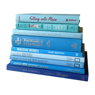 Bright Blue Tone Decorative Books - Set of 9