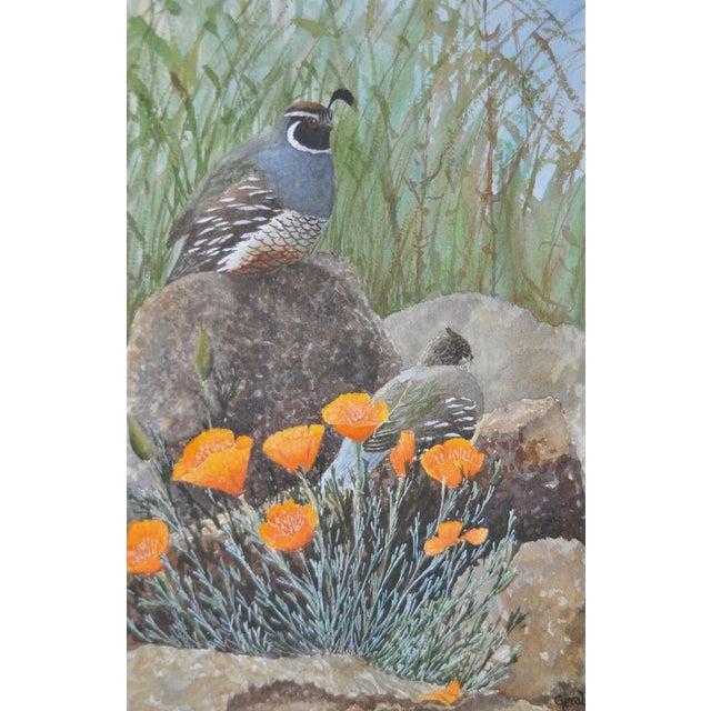 Gerald Petitt California Quail & Poppies Watercolor c.1970s - Image 3 of 11