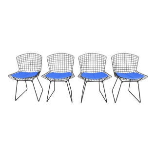Mid-Century Dining Chairs by H. Bertoia for Knoll - Set of 4