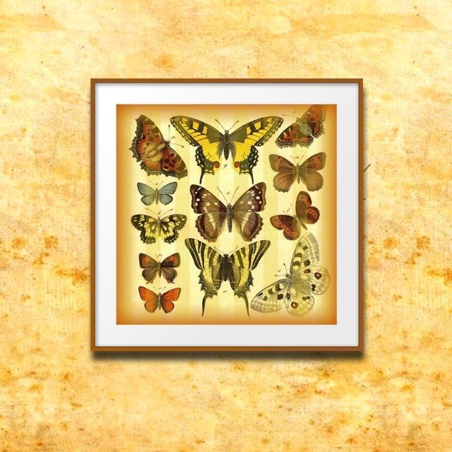 Vintage 'Butterflies on Stripes' Archival Print - Image 3 of 4