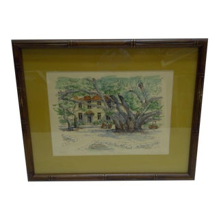 Limited Edition Signed Framed Print Bauyan Tree George Allan