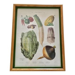 Vintage French Vegetables Print
