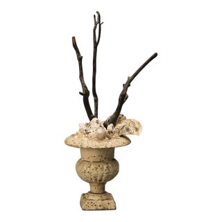 Painted iron urn, France c. 1885, now filled with bleached coral branches