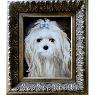 Portrait Oil Painting of a Maltese Dog