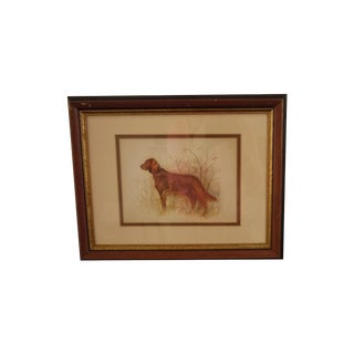 Retriever Framed Print
