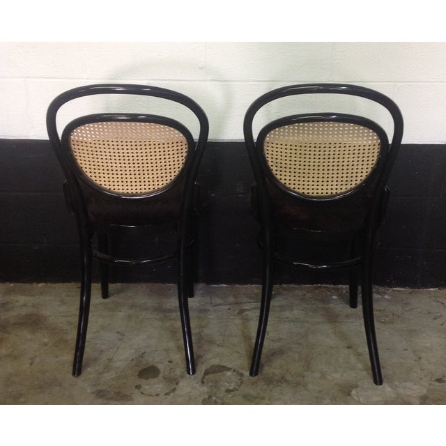 Cane Back Bentwood Chairs With Cowhide Seats - Image 5 of 8