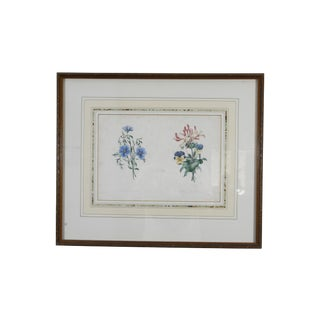 B. Bessin French Antique Botanicals - Set of 2