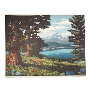 """""""Red Firs on Signal Mountain"""" Crandall Print"""