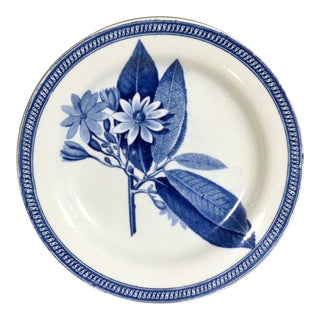 English Pearlware Plate with Botanical Specimen in Underglaze Blue, circa 1820