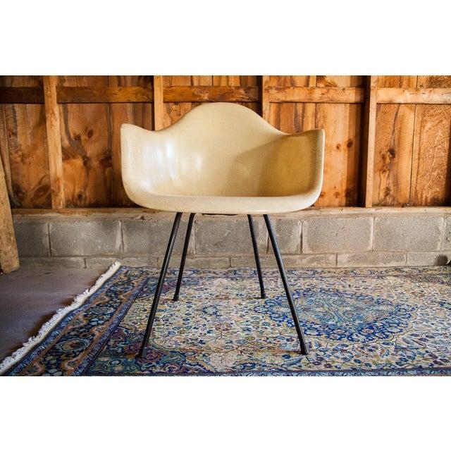 1950s Eames Venice Label Parchment Chair - Image 2 of 7