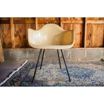 Image of 1950s Eames Venice Label Parchment Chair