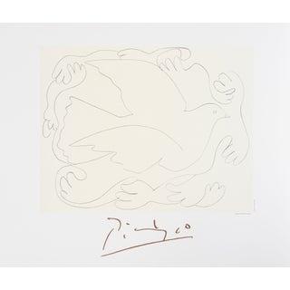 Pablo Picasso - Etudes De Mains Et Colombe Litho