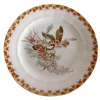 Choisy Le Roi Orchid Plate