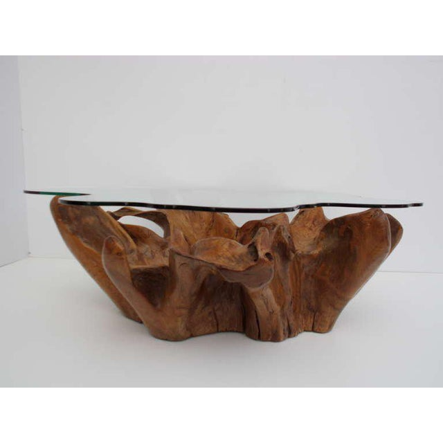 Teak Root Coffee Tables: Excellent Stunning Vintage Teak Root Coffee Table With