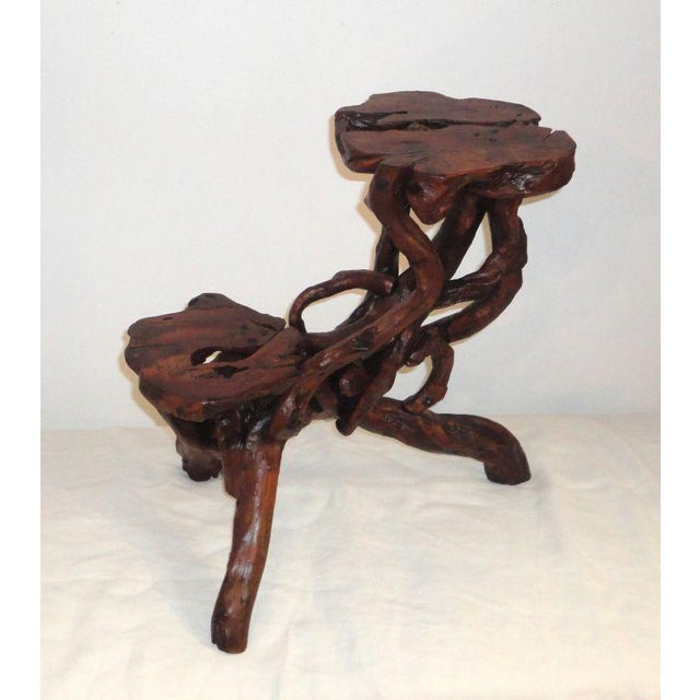Early 20th Century Root and Twig Tabletop Plant Stand - Image 8 of 8