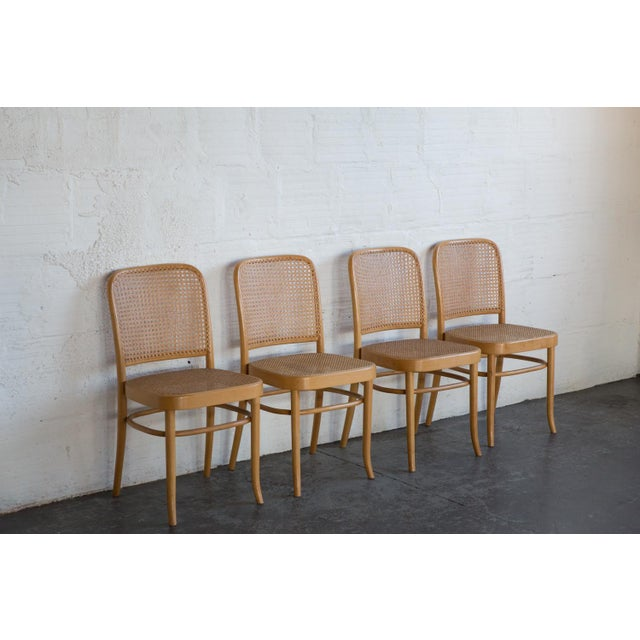 Prauge Cane Bentwood Woven Side Chairs - Set of 4 - Image 3 of 11
