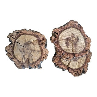 Burled Raw Wood Rustic Coasters - Set of 3