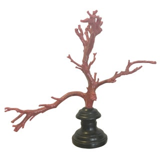 Large Red Coral on Stand