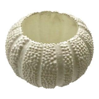 Sea Urchin Delicate White Ceramica Bowl