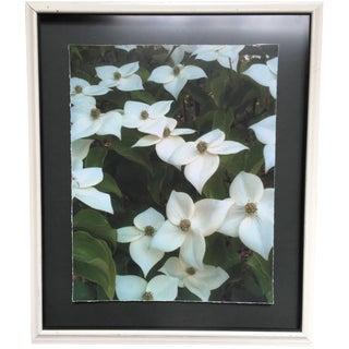Spring Flowers Print in Vintage Frame