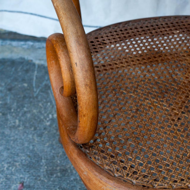 Vintage Thonet Arm Chair - Image 7 of 11