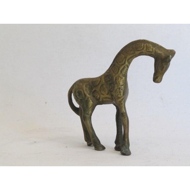Petite Brass Giraffe - Image 4 of 5