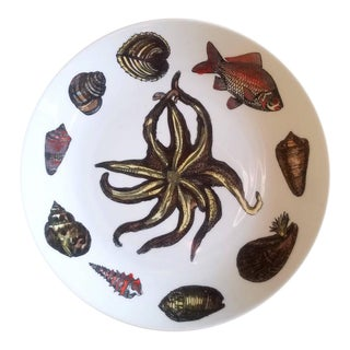Set of 8 Piero Fornasetti Rare Dishes Decorated With Sea Anemones, Urchins & Shells