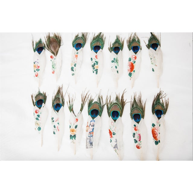Painted Peacock Feathers - Set of 14 - Image 8 of 8