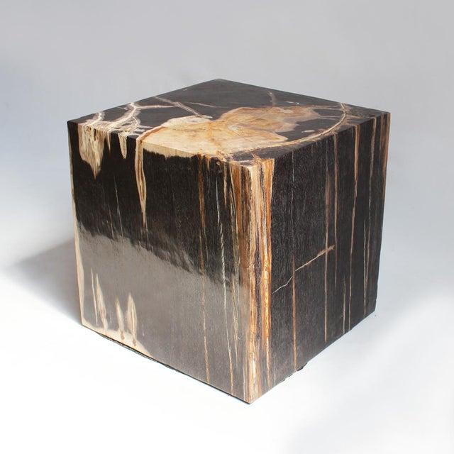Square petrified wood side table chairish
