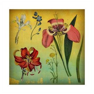 Antique 'Lily & Iris' Archival Print