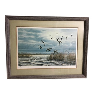 Framed Waterfowl & Landscape Artwork
