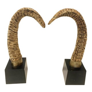 Decorative Mounted Brass and Rams Horns