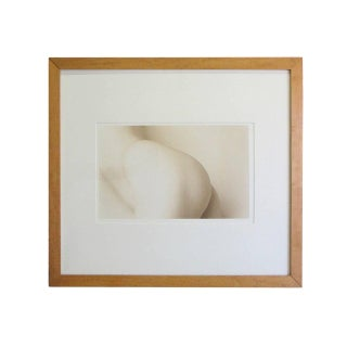 Sepia Toned Photograph of the Female Form