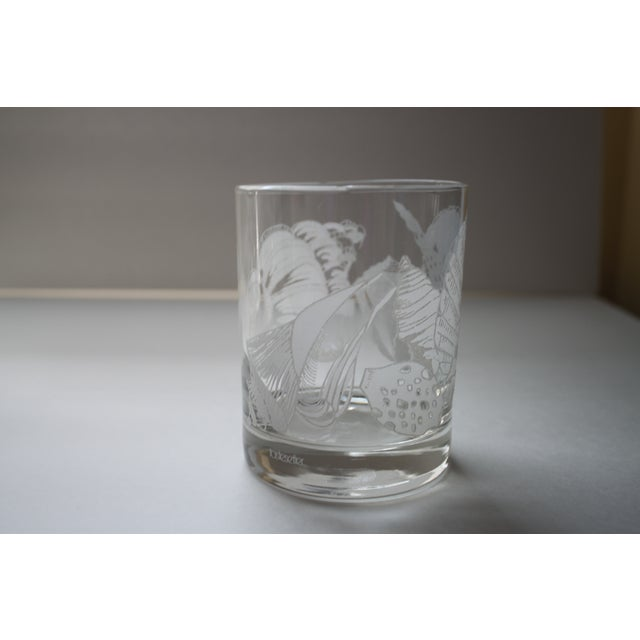 Image of Tastesetter Seashell Cocktail Glasses - Set of 6