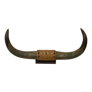 1950's Mounted Bull Horns
