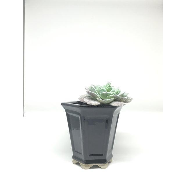 Image of Vintage Hand-Glazed Asian Planter