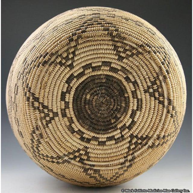 Apache Basketry Olla, circa 1890 - Image 6 of 7