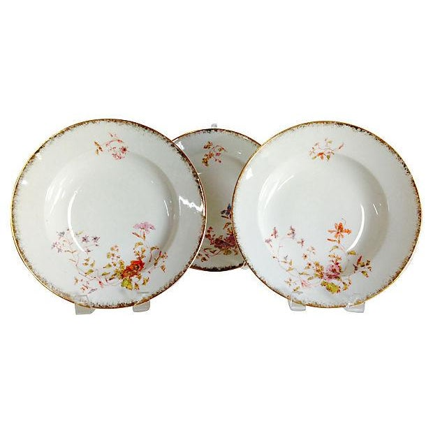 Image of French Limoges Dinner Plates - S/6