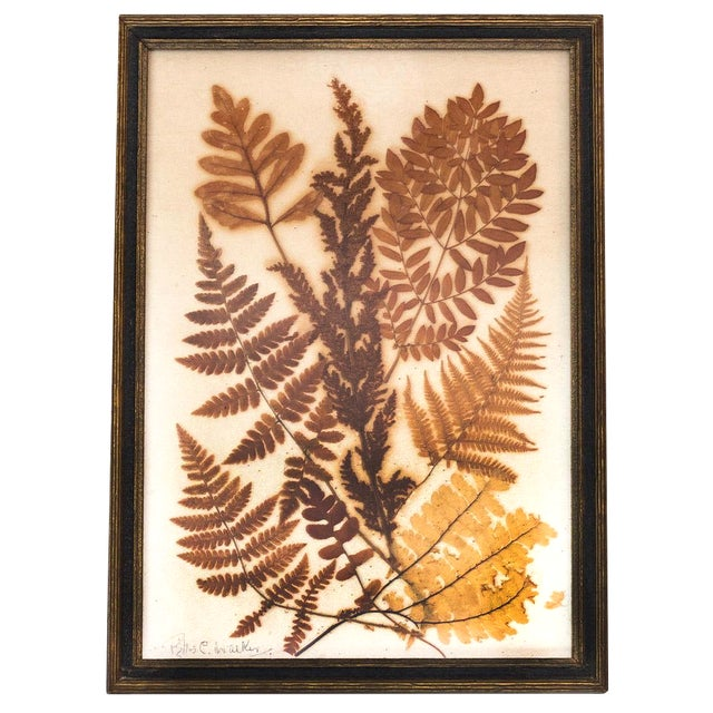 Pressed Fern Wall Hanging - Image 1 of 5