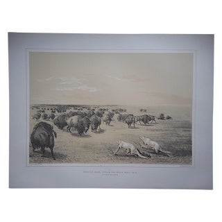 """Buffalo Hunt Under Wolf Skin "" Ltd. Ed. Serigraph"