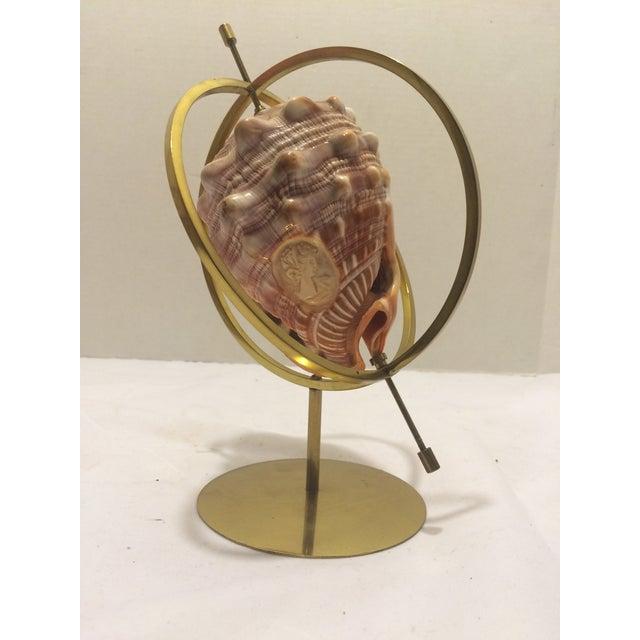 Image of Italian Cameo Conch Shell Armillary