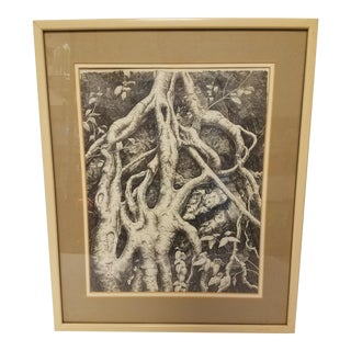 Tree Root System Graphite Drawing