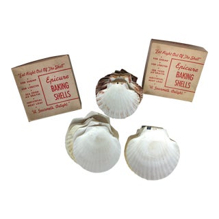 Vintage Clam Baking Shells - Set of 20