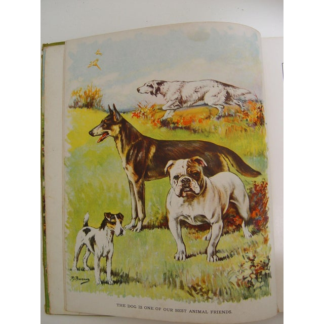 1928 Animal Friends Story Book - Image 5 of 10