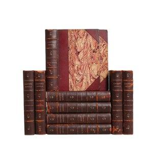 Weathered Leather Books: J. F. Cooper - Set of 10