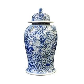 Chinese Blue & White Phoenix Bird Porcelain Jar