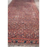 Image of Persian Malayer Palace Runner 7' x 19'2""